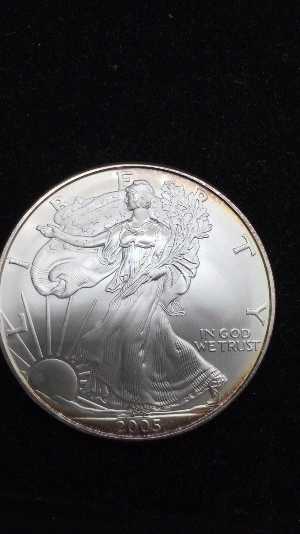 2005 American eagle dollar coin