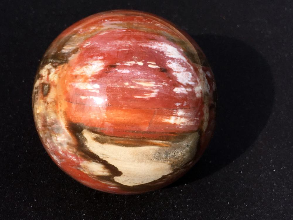 Lot 51: Petrified wood, Rock, Crystal, Natural, Décor, Collectible, Carving, Sphere