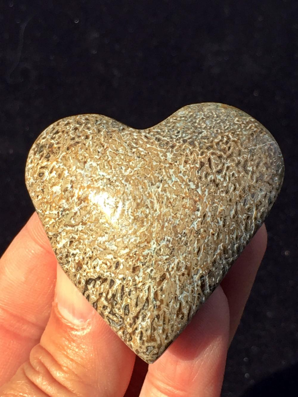 Lot 76: Dinosaur, Rock, Fossil, Natural, Collectible, Carving, Heart