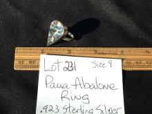 Lot 231: Shell, Natural, Jewelry, Sterling, Abalone