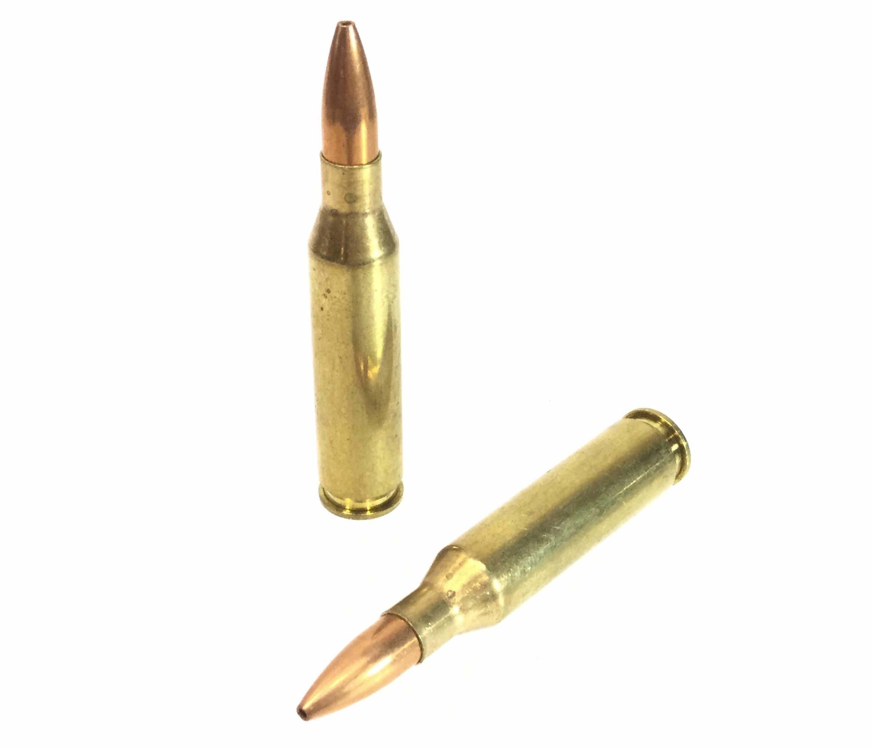 (430+) 260 Remington Rifle Rounds