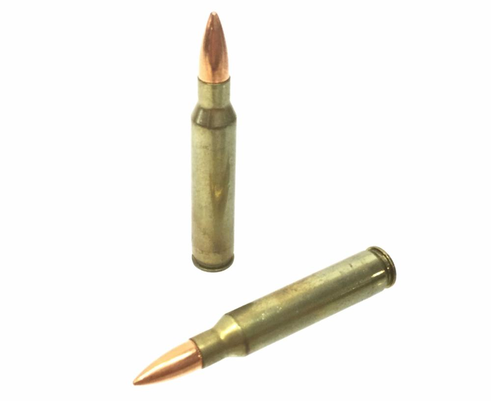 (640+) .223 Remington Rifle Rounds