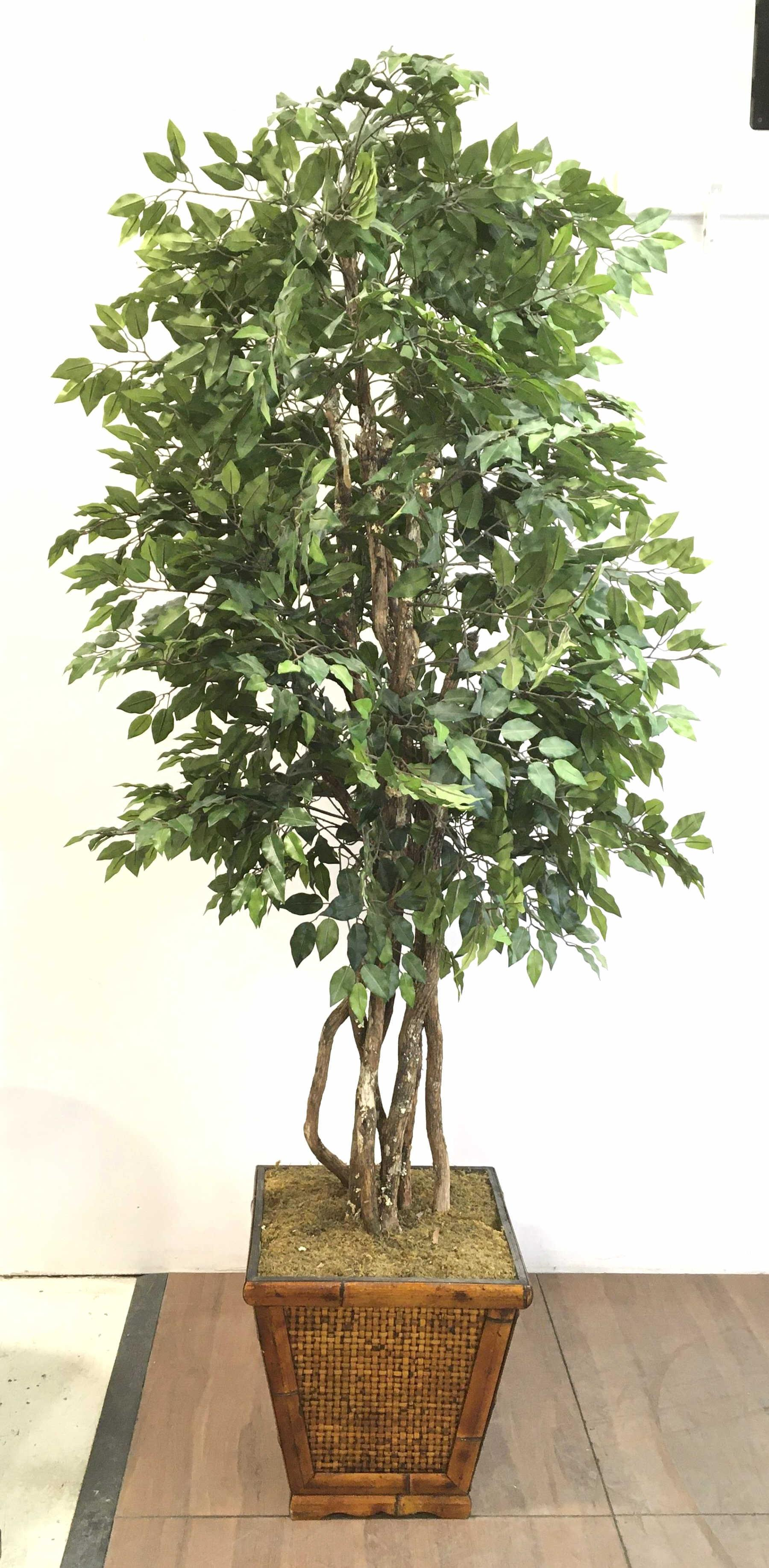 8ft Faux Potted Tree In Woven Bamboo Planter