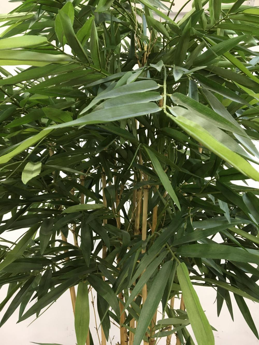 84in Faux Bamboo Tree In Bamboo Planter