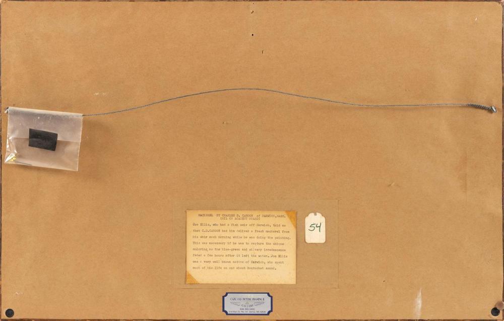 CHARLES DREW CAHOON, Massachusetts, 1861-1951, Still life of a mackerel., Oil on board, 13