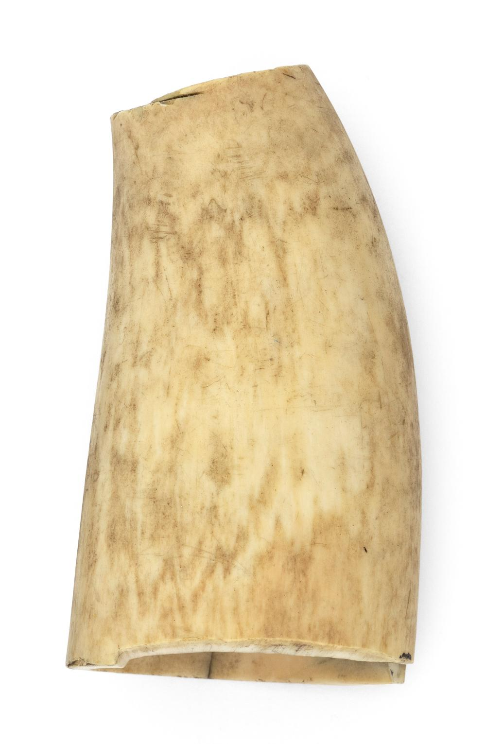 SCRIMSHAW WHALE'S TOOTH 19th Century Length 4