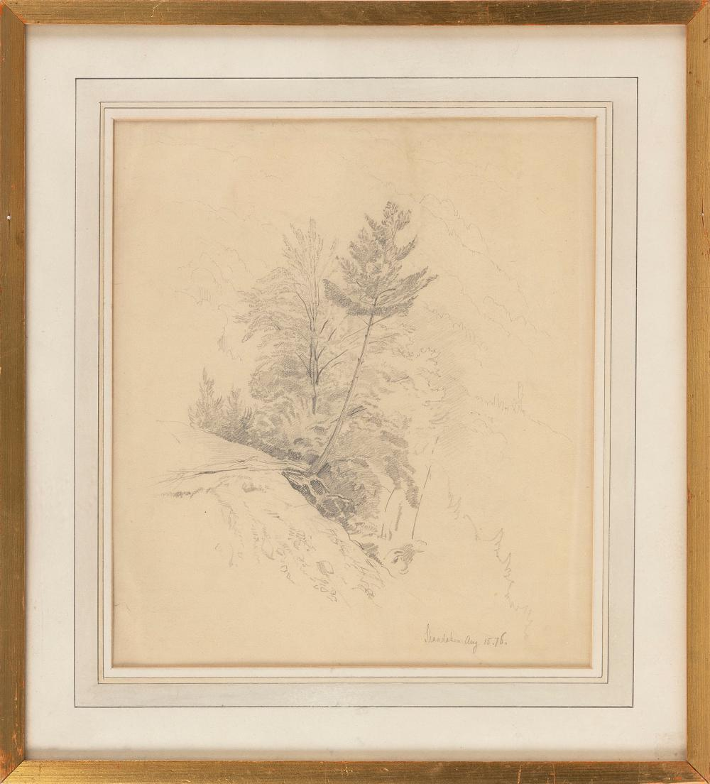 """JOHN WILLIAM CASILEAR (New York/Vermont, 1811-1893), """"Study of a Tree""""., Pencil on paper, 11"""" x 9.5"""" sight. Framed 15.75"""" x 14.25""""."""