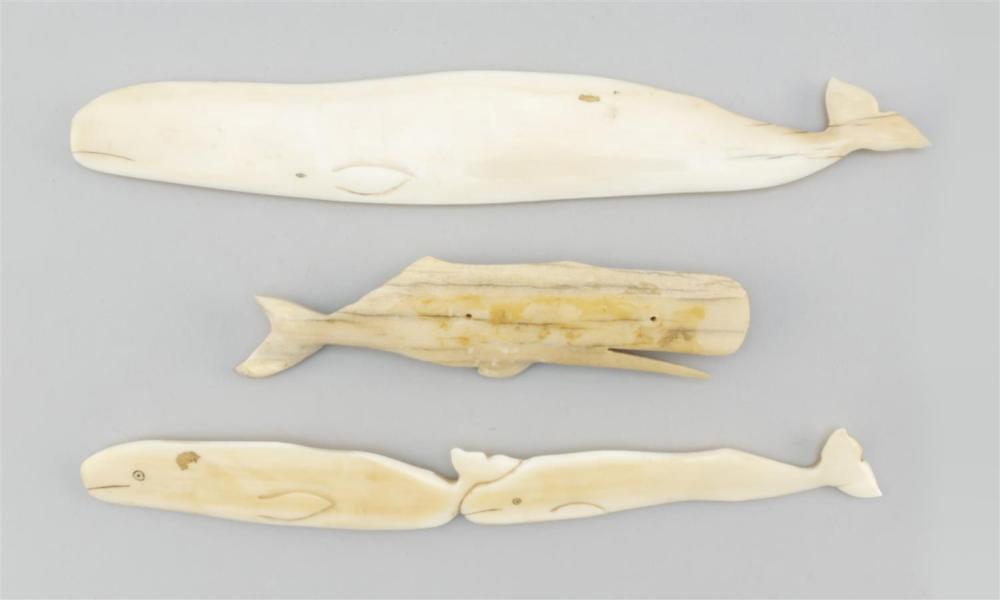 THREE ESKIMO WHALE CARVINGS Two carved from walrus ivory and one carved from petrified bone. Lengths from 5.5