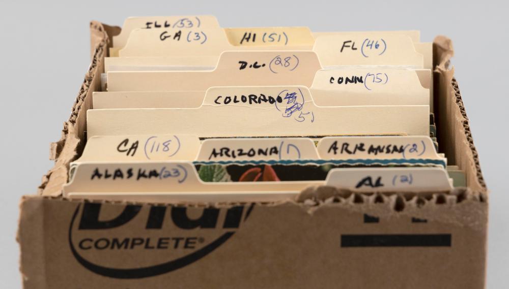 (VIEW) ALABAMA THROUGH ILLINOIS: 450 POSTCARDS Early to Mid-20th Century