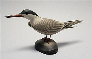 LIFE-SIZE COMMON TERN By James Lapham of Dennisport, Massachusetts. Signed and identified on base.