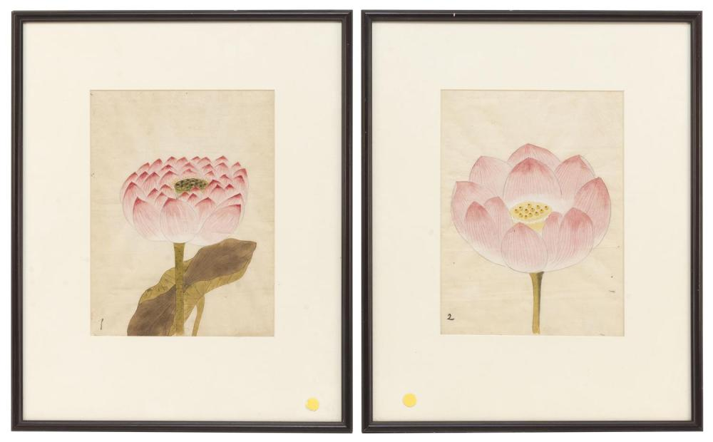 "PAIR OF CHINESE WATERCOLORS Depicting lotus blossoms. Mat opening 14"" x 10.5"". Framed 24"" x 19.5""."