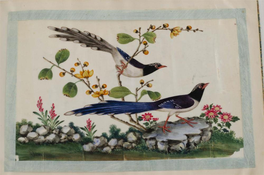 "Lot 1115: PORTFOLIO OF TWELVE PITH PAPER PAINTINGS Depicting brightly colored bird scenes. Original cloth-covered holder. Paintings 7"" x 10.75""."