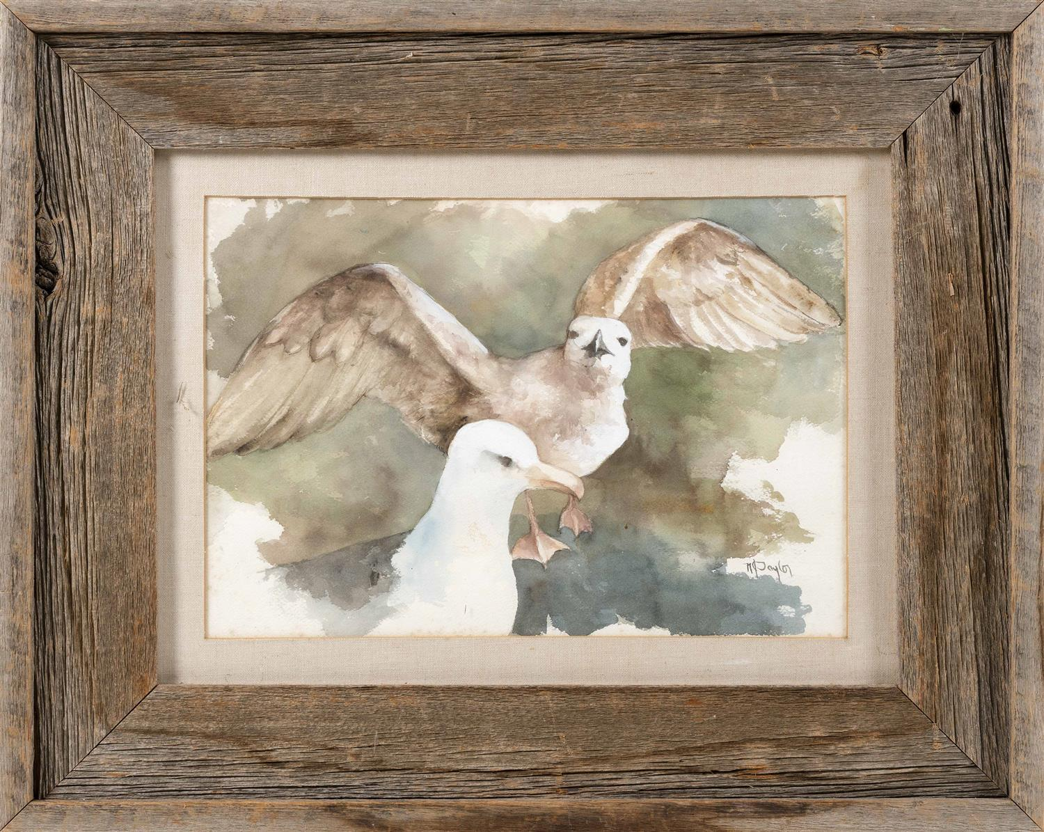 """N. TAYLOR, Provincetown, Massachusetts, 20th Century, Two gulls., Watercolor on paper, 10.5"""" x 15.5"""" sight. Framed 20"""" x 26""""."""