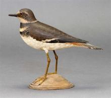LIFE-SIZE DECORATIVE KILLDEER By A. Elmer Crowell (1862-1952) of East Harwich, Massachusetts. Tack eyes. Minor damage to tip of bill...