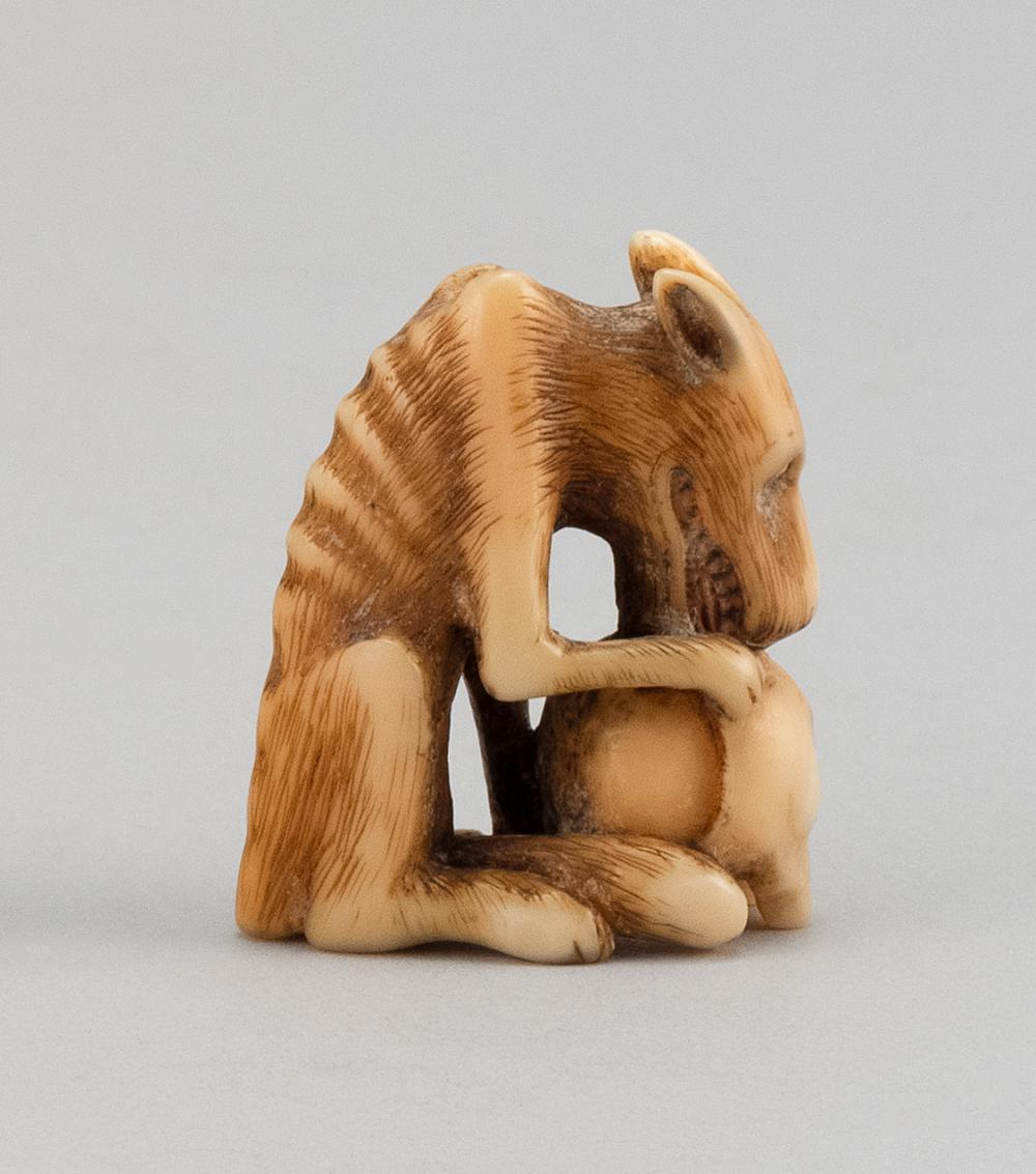 JAPANESE BONE NETSUKE In the form of a wolf with a decaying human skull. Height 1.6