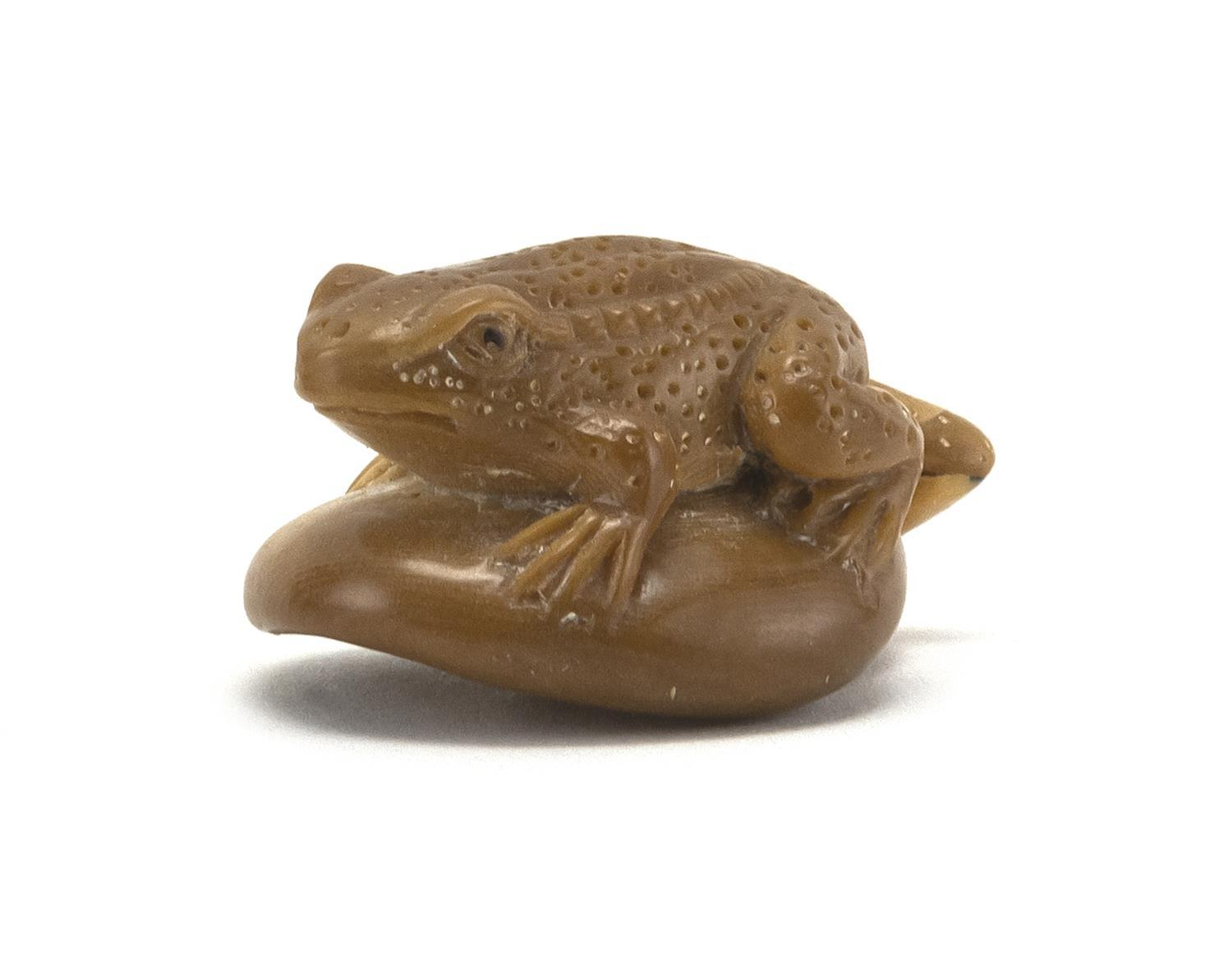 "JAPANESE PALM NUT NETSUKE In the form of a frog on a mushroom. Signed. Length 1.5""."