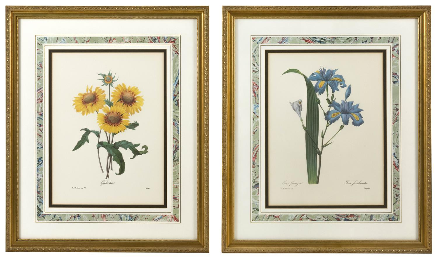 """AFTER PIERRE-JOSEPH REDOUTÉ, France, 1859-1840, Two lithographs: """"Iris"""" and """"Galardia""""., 12.5"""" x 9.5"""" sight. Framed 20.25"""" x 17.25""""."""