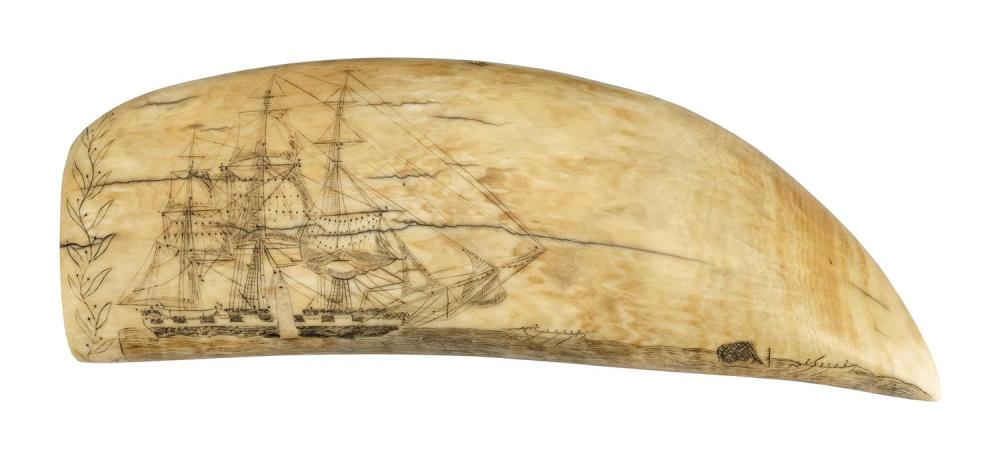 """SCRIMSHAW WHALE'S TOOTH BY EDWARD BURDETT Inscribed on edge """"William.Tell."""", the name of Burdett's whaleship, and signed on base """"En."""