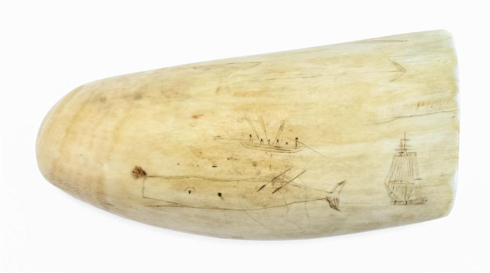 POLYCHROME SCRIMSHAW WHALE'S TOOTH Both sides with whaling scenes. Obverse depicts an American-flagged whaleship, three whaleboats i..