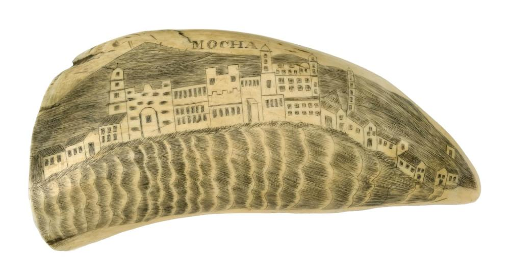 POLYCHROME SCRIMSHAW WHALE'S TOOTH Obverse titled