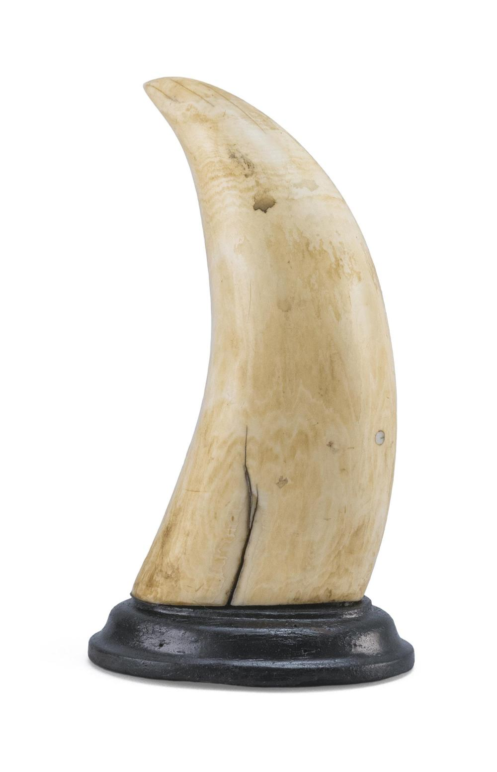 SCRIMSHAW WHALE'S TOOTH DEPICTING THE CIRCUS PERFORMER