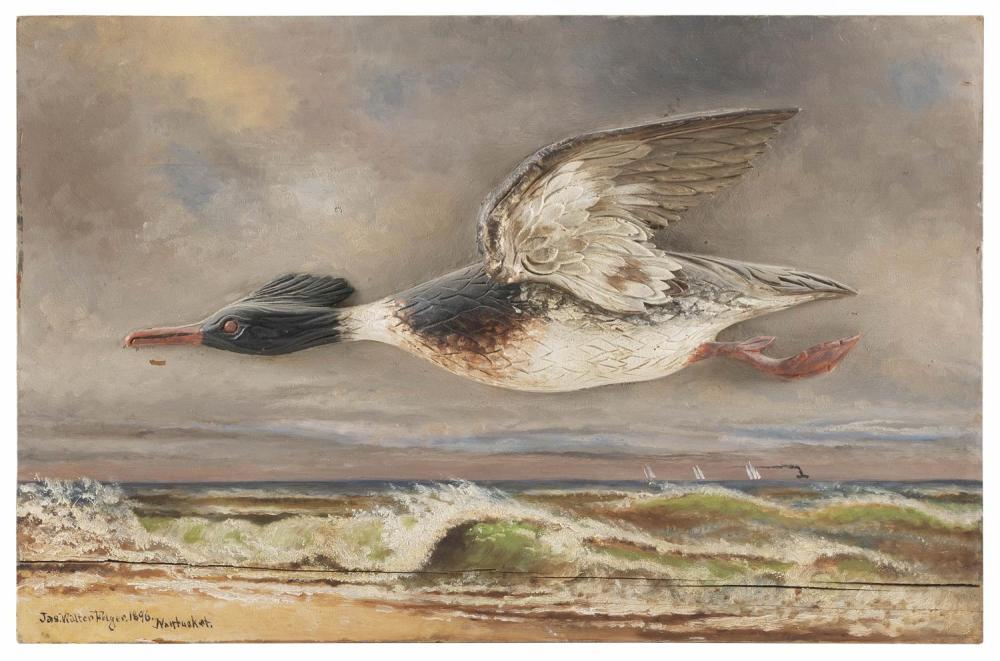 """JAMES WALTER FOLGER, Nantucket, Massachusetts, 1851-1918, Red-breasted merganser drake in flight,, Oil on board, 15.5"""" x 24"""". Drake..."""
