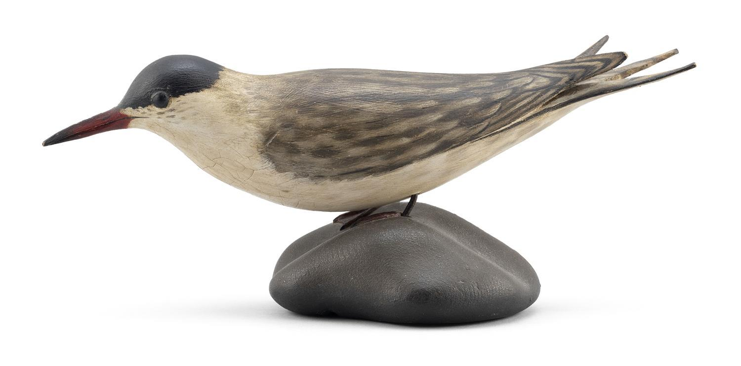 """A. ELMER CROWELL LIFE-SIZE COMMON TERN Mounted on a sculpted wooden base. Oval brand. Height 5"""". Length 11.75"""". From the Mr. & Mrs...."""