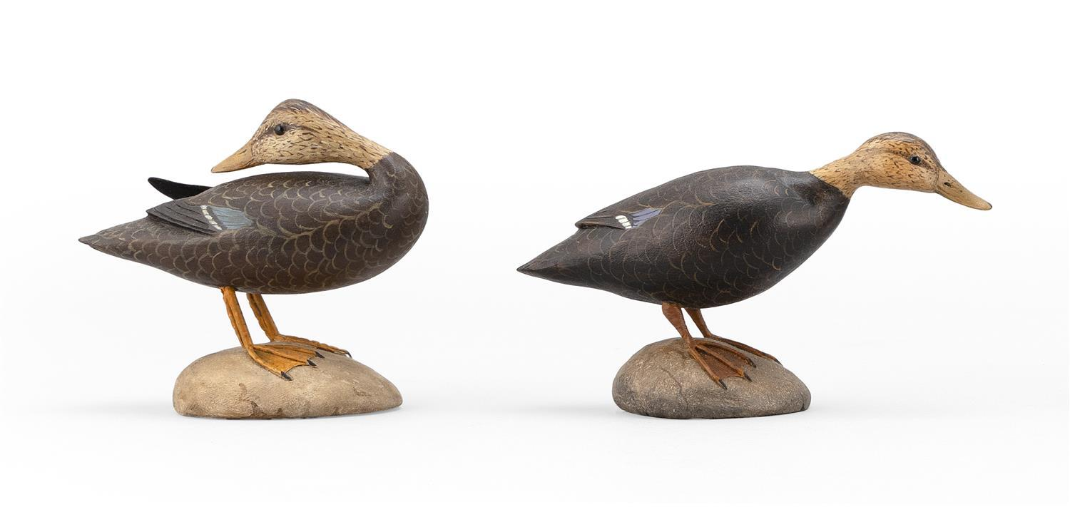 "TWO FRANK ADAMO MINIATURE BLACK DUCKS One in preening position. Both with glass eyes. Mounted on oval bases. Both signed ""F. Adamo""...."