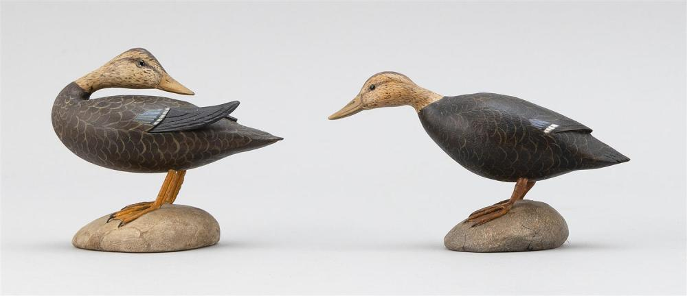 TWO FRANK ADAMO MINIATURE BLACK DUCKS One in preening position. Both with glass eyes. Mounted on oval bases. Both signed
