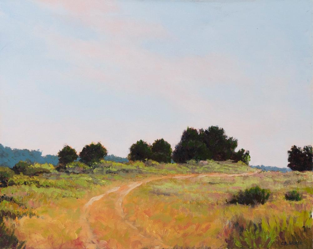 "CAROLINE A. WALKER (New York/Nantucket, Contemporary), Landscape, likely Nantucket, Massachusetts., Oil on canvas, 16"" x 20"". Unframed."