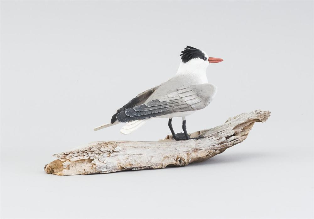 STAN SPARRE MINIATURE ROYAL TERN Mounted on a driftwood base. Signed