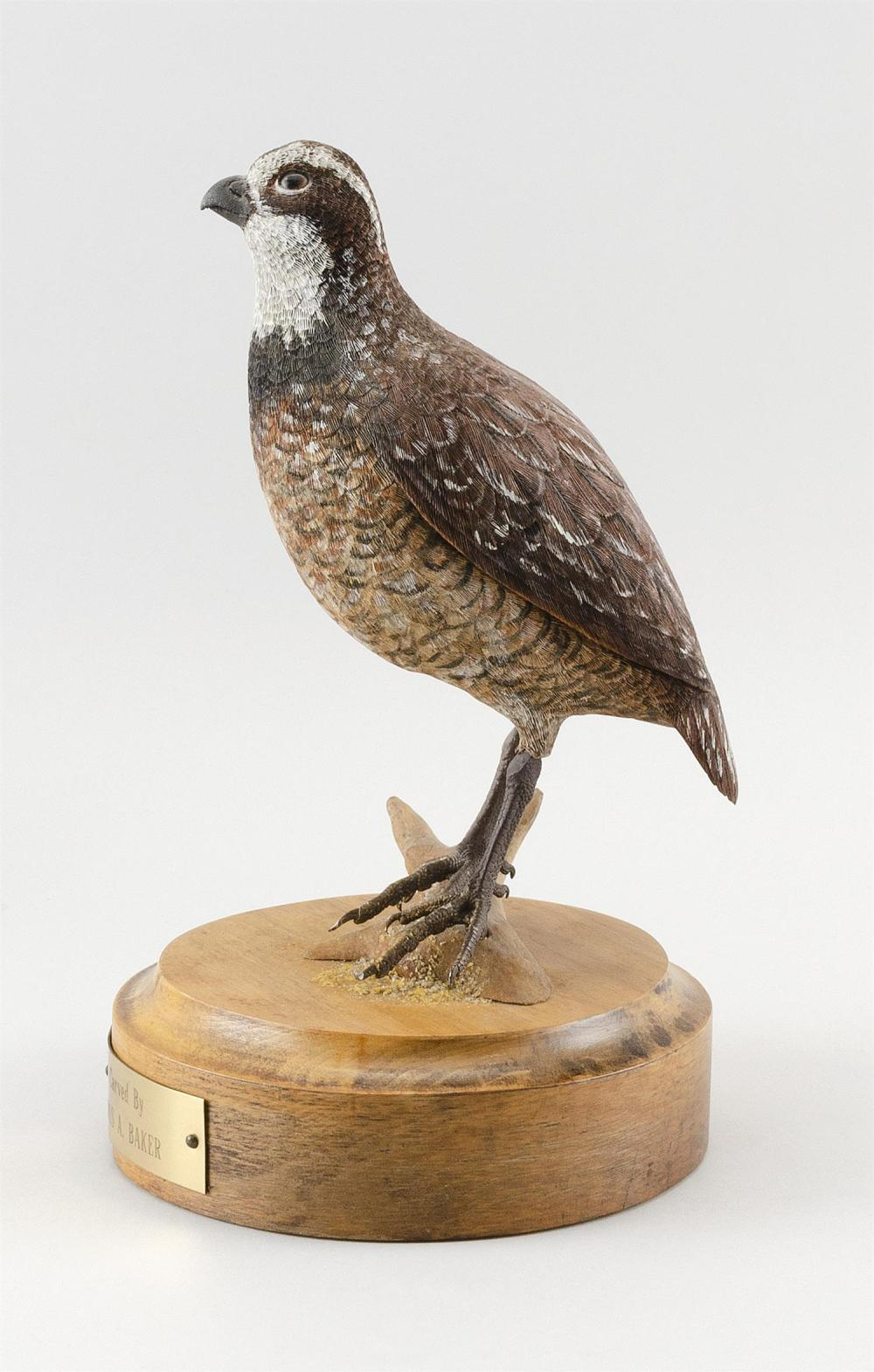 ROSS BAKER LIFE-SIZE QUAIL Glass eyes. Mounted on a circular wooden base. Height 11