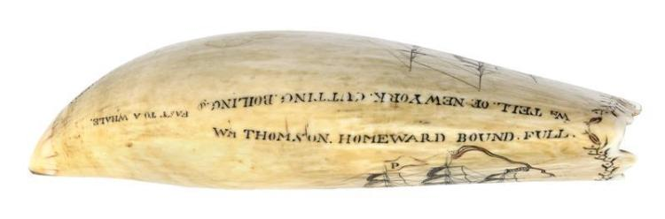 POLYCHROME SCRIMSHAW WHALE'S TOOTH BY EDWARD BURDETT Inscribed on lower edge