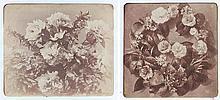 Adolphe BRAUN (1812-1877). Études de fleurs. Vers 1854. 20 épreuves d'époque sur