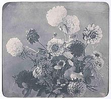 Adolphe BRAUN (1812-1877). Bouquet de dahlias. 1853. Épreuve d'époque sur papier