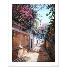 Midday at Water Alley by Nell, Rocio