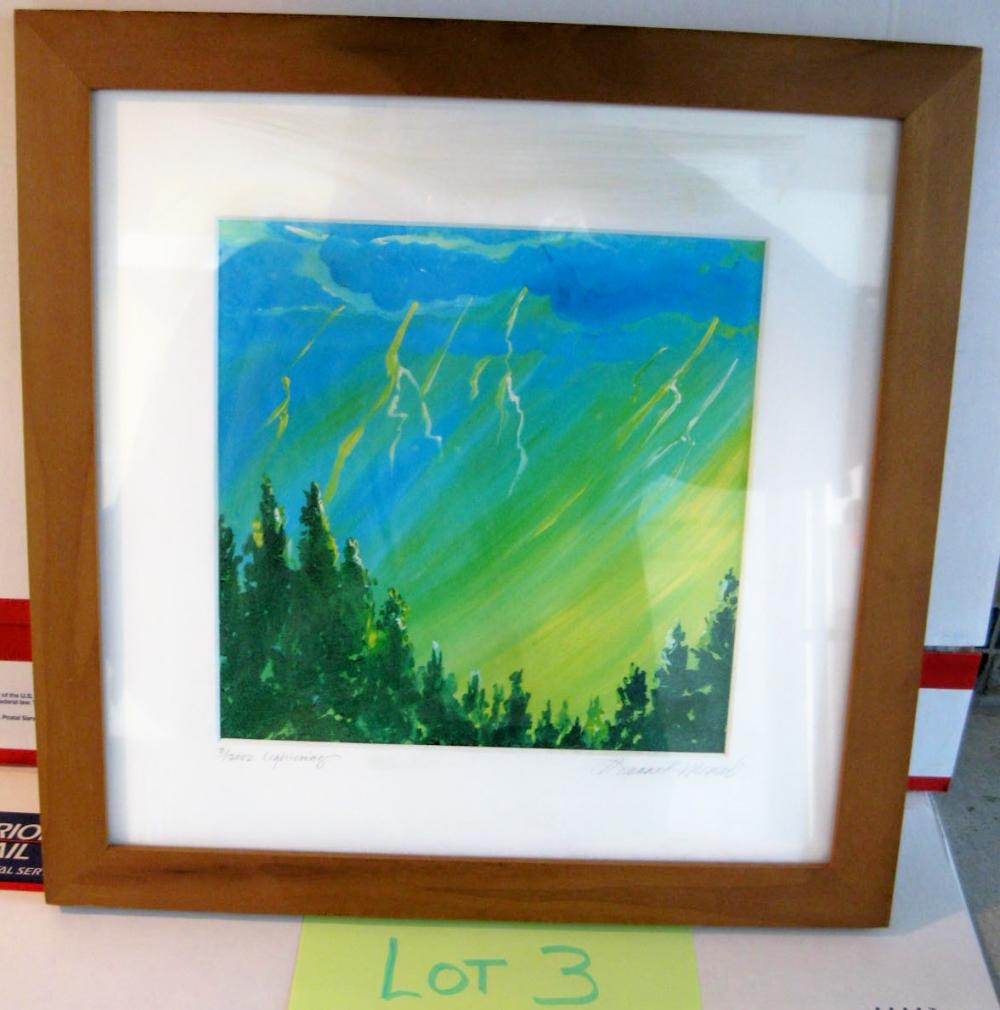 """ Lightning "" Framed and Signed in year 3/2002"