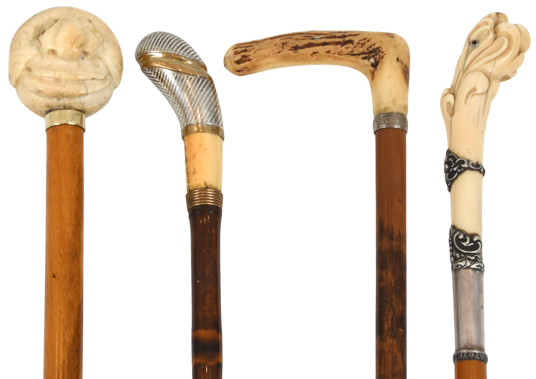 Group of Four Walking Sticks