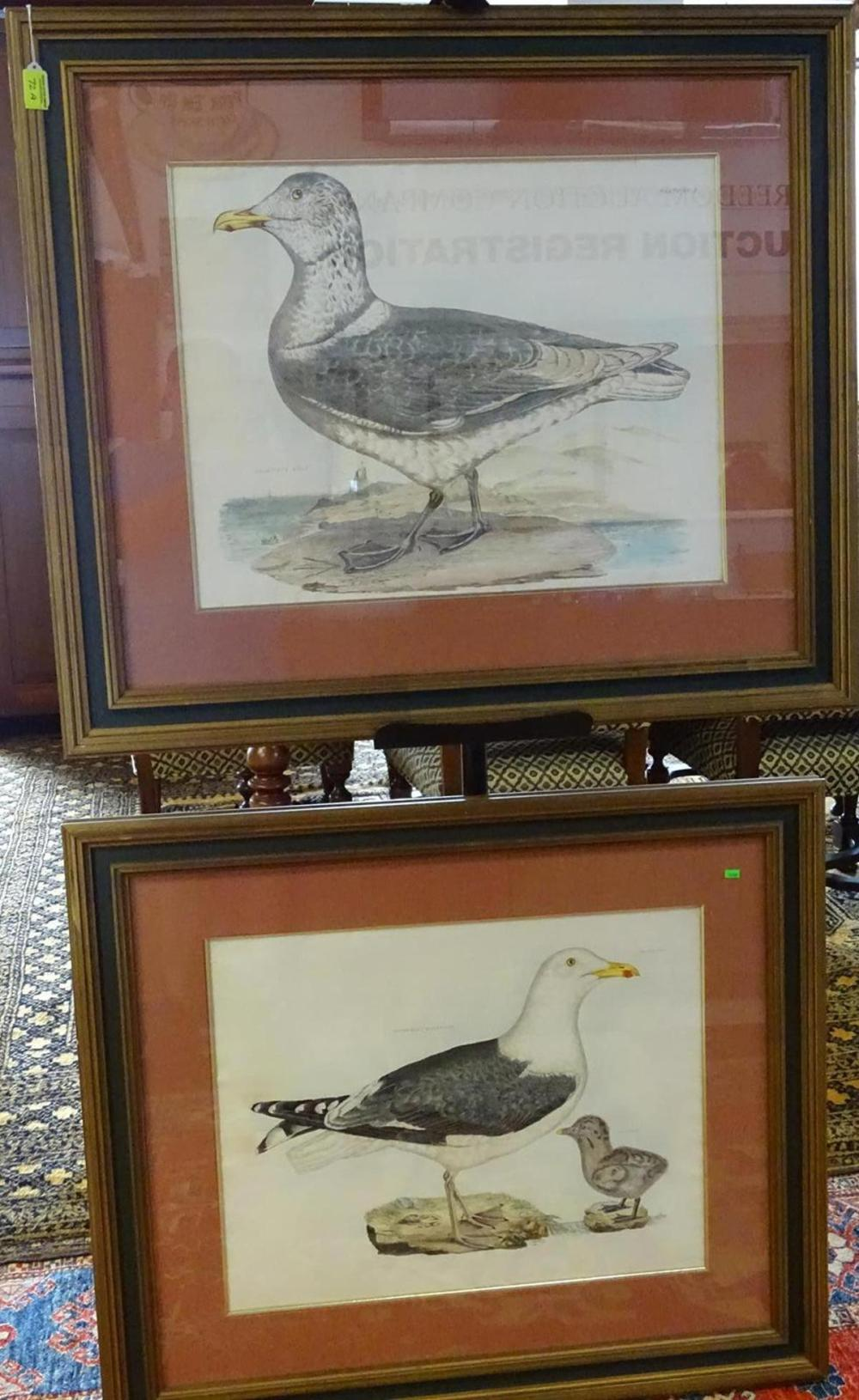 JOHN SELBY PRIDEAUX HAND COLORED ETCHINGS