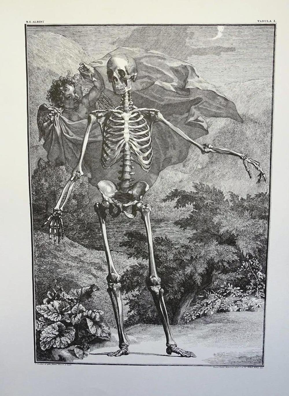 AFTER VERBEEK (1740) ETCHING