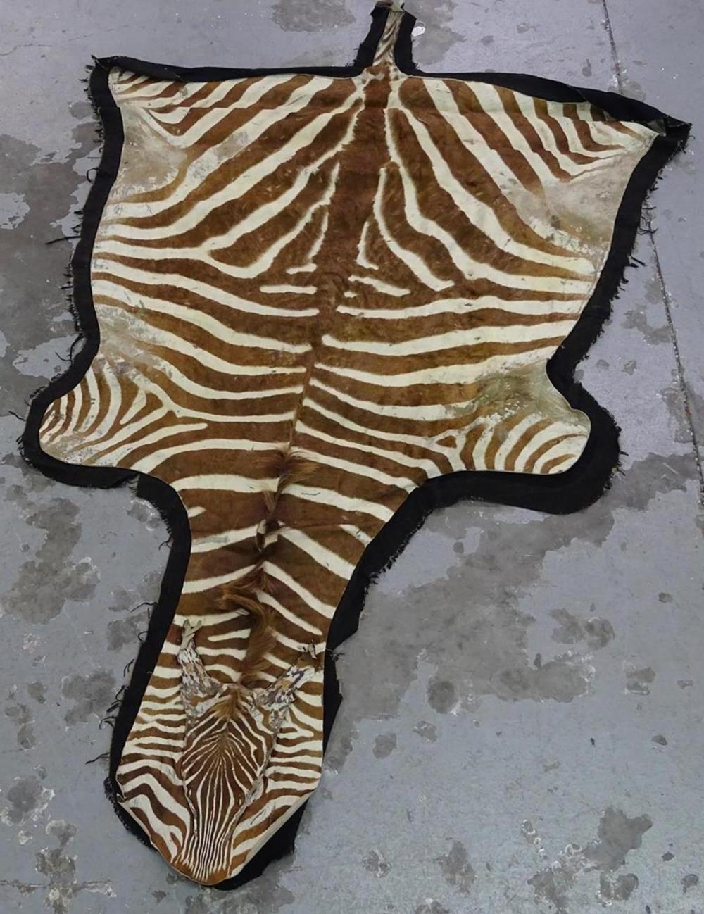 AFRICAN ZEBRA HIDE RUG