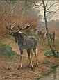 GEORGES FREDERIC ROTIG (French 1873-1961)  MOOSE IN THE WOODS, Georges Frédéric Rötig, Click for value