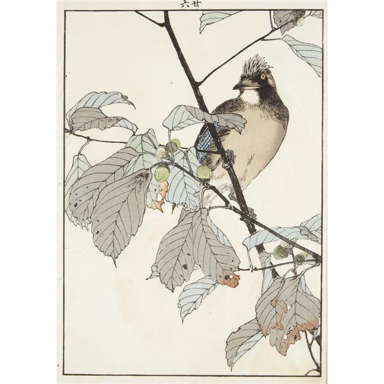 IMAO KEINEN (1825-1924), , 11 BIRD AND FLOWER COLOR WOODBLOCK PRINTS