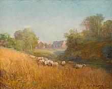 DOUGLAS ARTHUR TEED, (AMERICAN 1863-1929), SHEEP GRAZING