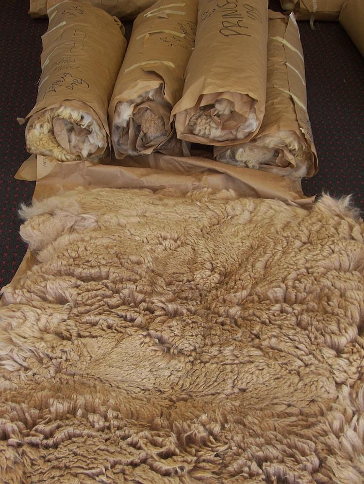 5 fleeces Fawn Grade 1&2