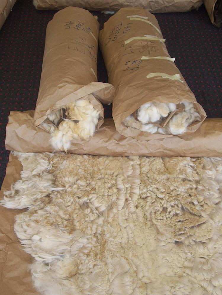 3 fleeces White Grade 1