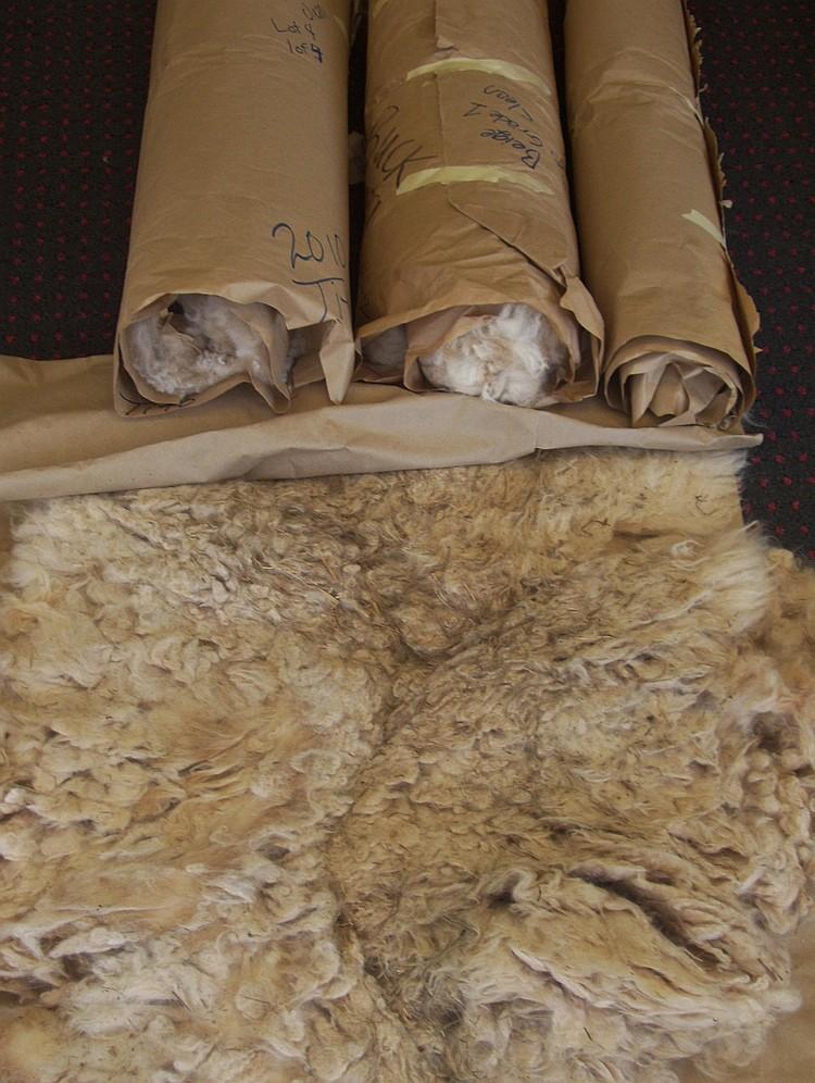 3 fleeces Beige Grade 1