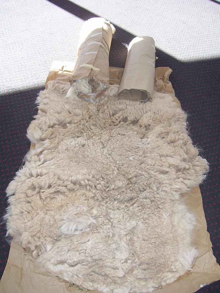 3 fleeces beige Grade 1&2