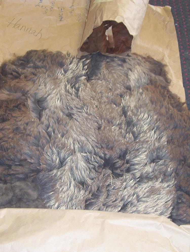 2 fleeces dark brown (indeterminate) & Dark rose grey grade 4