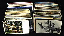 600-800 Mixed States Towns View U.S. & Foreign Postcards